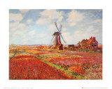 Tulip Fields with the Rijnsburg Windmill Affiches par Claude Monet