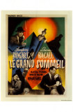 Le grand sommeil Posters