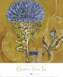 Caribbean Flower II Kunstdruck von Sarah Van Beckum