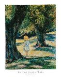 Unter dem Olivenbaum Kunstdrucke von Linda Lee