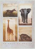 Animals of Africa Pósters por Emmanuelle Teyras