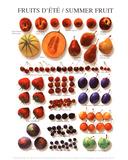 Summer Fruit Poster