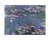 Vandliljer Plakater af Claude Monet