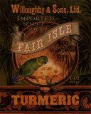 Turmeric Poster par Pamela Gladding