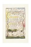 The Lamb, 1789 Reproduction procédé giclée par William Blake