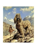 Afghan Hound Giclee Print by Eric Tansley