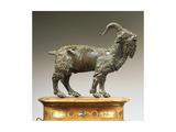 Goat Giclee Print by Andrea Riccio