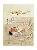 A Pair of Mandarin Ducks Giclee Print by Isoda Koryusai