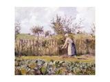 In Garden Reproduction procédé giclée par Camille Pissarro