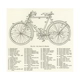 The Parts of a Bicycle Giclee Print