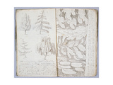 The Art of Sketching', 1801 Giclee Print by Archibald Robertson