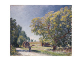 A Clearing in a Forest, 1895 Giclee Print by Alfred Sisley
