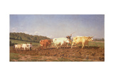 Ploughing in the Nivernais, 1850 Giclee Print by Rosa Bonheur