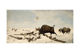 Buffalo Hunt, C.1822-1824 Giclee Print by Peter Rindisbacher