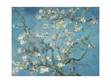 Almond Blossom, 1890 Giclée-tryk af Vincent van Gogh