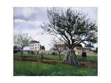 Apple Trees in Pontoise Reproduction procédé giclée par Camille Pissarro