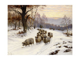 A Shepherd and His Flock on a Path in Winter Gicléetryck av Wright Barker