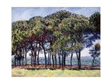 Pines, Cap D'Antibes, 1888 Giclee Print by Claude Monet