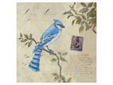 Birds 4 Affiches par Kurt Novak