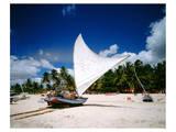Sailing boat Jangada at Combuco Beach near Fortaleza, Ceara, Brazil Posters