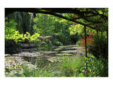 Claude Monet's Water Garden in Giverny, Department of Eure, Upper Normandy, France Print