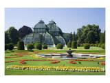 Palm House in the palace garden of Schoenbrunn Palace, Vienna, Austria Art