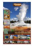 Parque Nacional Yellowstone Posters