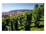 View from St. Wenceslas' Vineyard at the Royal Gardens on Hradcany towards Prague Lesser Town Láminas