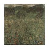 Orchard or Field of Flowers, Ca 1905 Giclée-Druck von Gustav Klimt