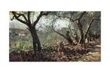 Among Olive Trees in Settignano, 1881 Reproduction procédé giclée par Telemaco Signorini