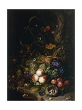 Still Life with Fruit, Flowers, Reptiles and Insects Giclee-trykk av Rachel Ruysch