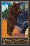 Don't Feed the Bears, Yellowstone National Park, Wyoming Cartel de plástico por  Lantern Press