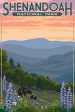 Shenandoah National Park, Virginia - Black Bear and Cubs Spring Flowers Targa di plastica di  Lantern Press