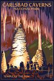 Carlsbad Caverns National Park, New Mexico - Temple of the Sun Plastikschild von  Lantern Press