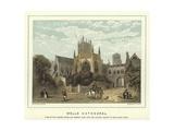 Wells Cathedral Reproduction procédé giclée par Hablot Knight Browne