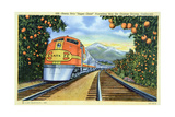 Postcard of the 'Super Chief' of the Santa Fe Railroad, Passing Through Orange Groves, 1950S Giclée-Druck