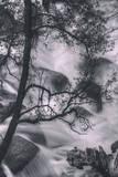 Down Into The Cascades, Yosemite National Park Fotografie-Druck von Vincent James