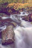 Autmn at Kaaterskill Creek, Catskill Mountains, New York Fotografisk trykk av Vincent James