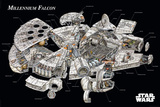 Star Wars - Millennium Falcon Cross-Section Posters