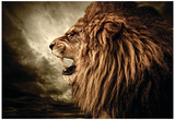 Roaring Lion Against Stormy Sky Posters