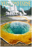 Morning Glory Pool - Yellowstone National Park Stampa