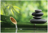 Spa Still Life With Bamboo Fountain And Zen Stone Poster