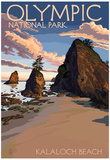 Kalaloch Beach - Olympic National Park, Washington Posters