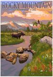 Moose and Meadow - Rocky Mountain National Park Posters