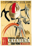 Cartel de carrera ciclista Póster