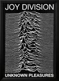 Joy Division punk Poster Unknown Pleasures Ian Curtis Pósters