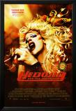 Hedwig And The Angry Inch Stampe