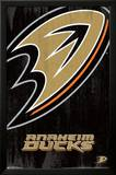 Anaheim Ducks Logo Poster