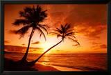 Tropischer Strand, Sonnenuntergang Poster