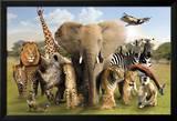 Wild World Poster